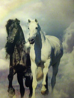 fantasy_black_and_white_horses_by_MeganraeImagination.jpg